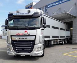 DAF new XF 480 FT SC